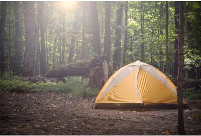 De 6 beste tips voor wildkamperen in Nederland