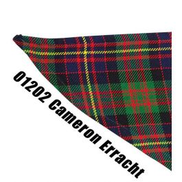 Das-Schotse-ruit-Cameron-Erracht