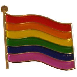 Pin-regenboogvlag