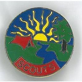 Scouts-pin