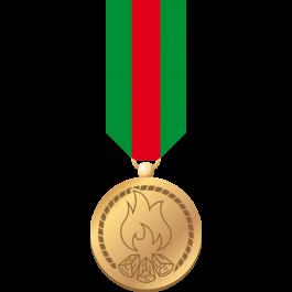 Waarderingsteken-Bijzondere-verdienste-(medaille-+-badge)