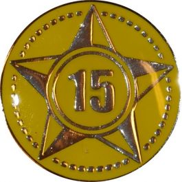 Lustrumteken-pin-geel-15-jaar-