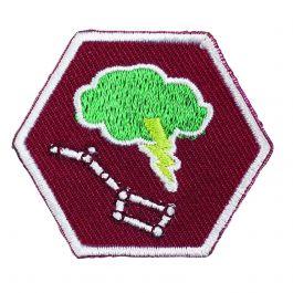 Specialisatie-insigne-Scouts-III-Buitenleven---Ster--&-Weerspecialist