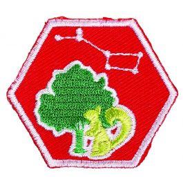 Verdiepingsinsigne-Scouts---Buitenleven-II-(rood)