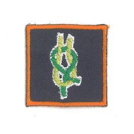 Kwalificatie-Teamleider-explorers-en-Adviseur-roverscouts