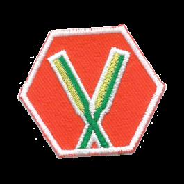 Basisinsigne-Scouts---Basis-roeien-(oranje)