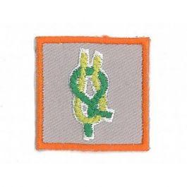 Kwalificatie-Leider-bevers,-welpen,-scouts