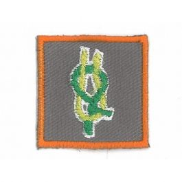 Kwalificatie-Teamleider-bevers,-welpen,-scouts