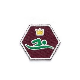 Specialisatie-insigne-Scouts-III---Meesterzwemmer