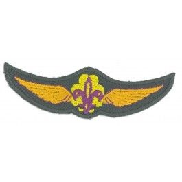 Gouden-wing-(Luchtscouts)