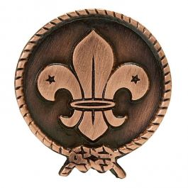World-Scout-logo-pin-25-mm