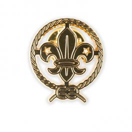 Pin-logo-World-Scout-