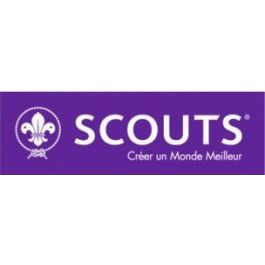 World-Scout-autosticker---Frans