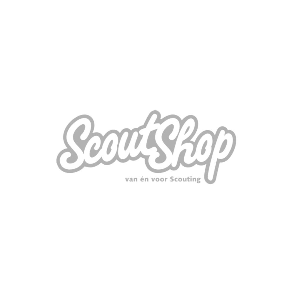 Badge-waarderingsteken-zilver-(oude-serie)
